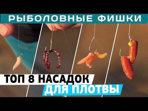 Лучшие насадки для ловли плотвы! ТОП 8 от Алексея Пугача! Рыболовные фишки!