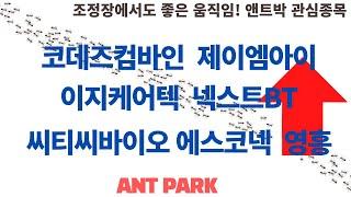 [앤트박 관심종목] 코데즈컴바인, 제이엠아이, 이지케어…