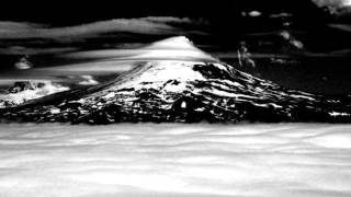 If These Trees Could Talk - Aleutian Clouds