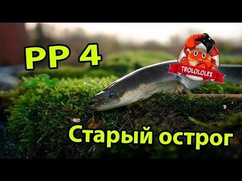 Русская рыбалка 4. Угорь на Старом остроге. Поиск Угря.