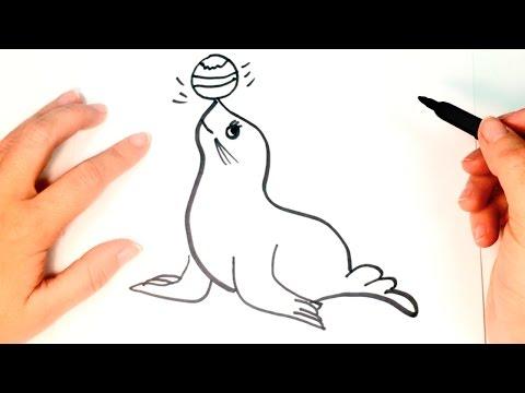 Cómo dibujar una Foca paso a paso | Dibujo fácil de Foca