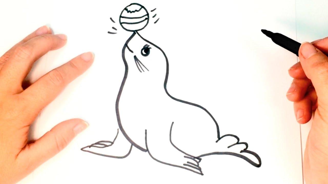 Cómo Dibujar Una Foca Paso A Paso Dibujo Fácil De Foca Youtube