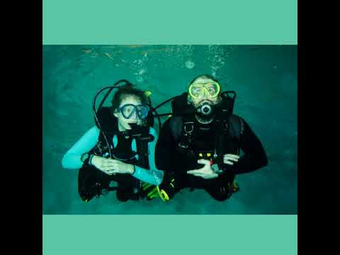 Courses/Learn to Dive | Learn to Scuba Dive