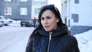 В Петропавловске бойцовская собака набросилась на беременную женщину | Новости сегодня