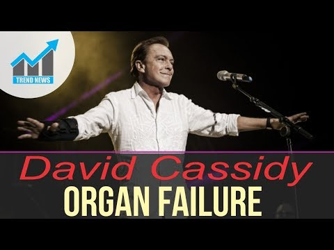 David Cassidy in critical condition with organ failure