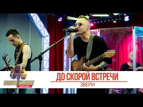Группа Звери — До скорой встречи | Золотой Микрофон 2019
