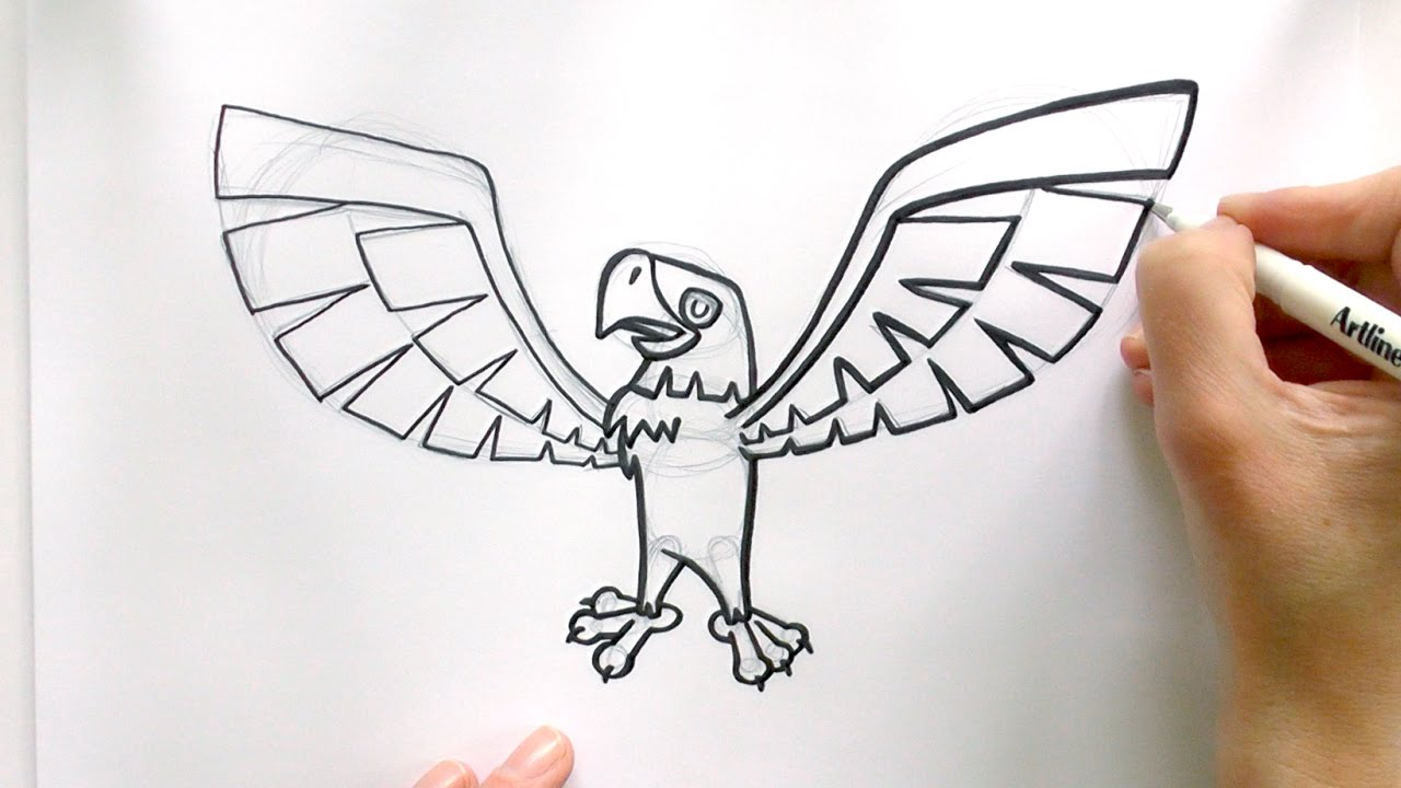 How to draw a cartoon eagle from animal jam zooshii style youtube