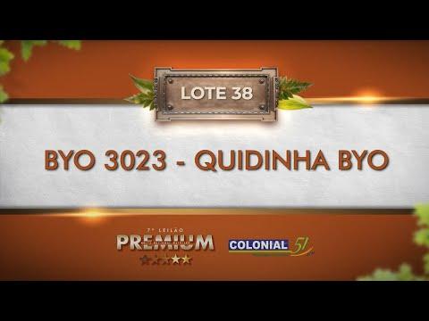 LOTE 38   BYO 3023