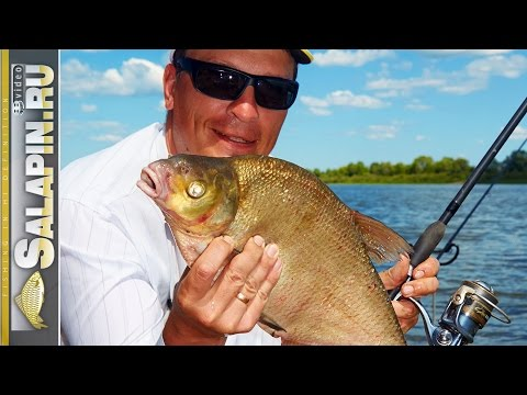 где клюет рыба на оке