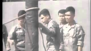 Tren bon Vung Chien Thuat - Che Linh Pre 75