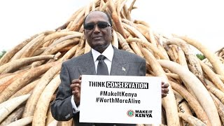There is need to do more after burning ivory, Chris Kirubi.