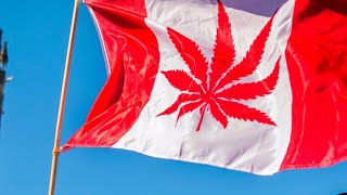 It's official: Canada will become 2nd country to legalize recreational marijuana