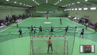 2019年IH ハンドボール 女子 2回戦 氷見(富山)VS 国分中央(鹿児島)