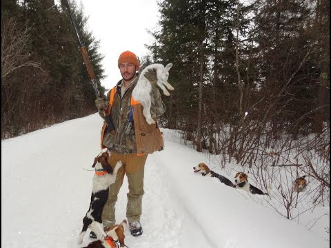 SnowShoe Hare Hunting 2012 Part One