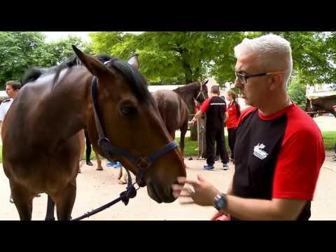 [RMBS 2016] La reconstruction par l'équitation