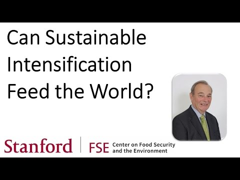 Can Sustainable Intensification Feed the World?