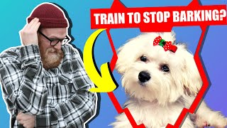 How To Stop Your MALTESE Barking