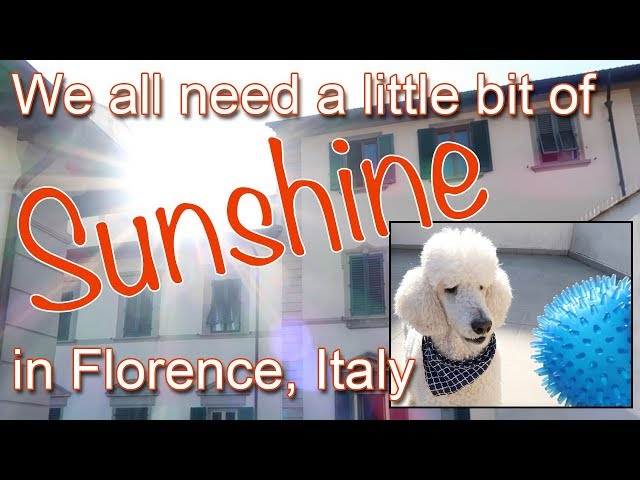 Sunshine in Florence, Italy