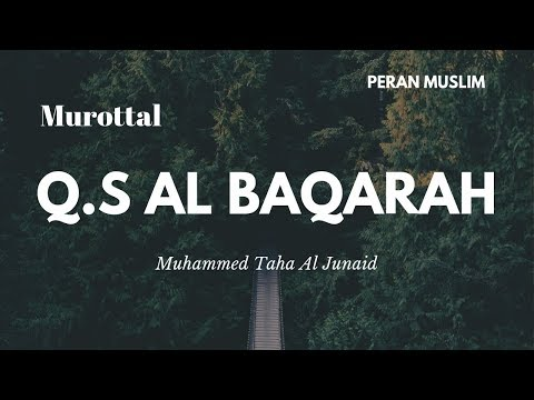 murottal-anak-merdu---muhammed-taha-al-junaid-|-q.s-al-baqarah-full
