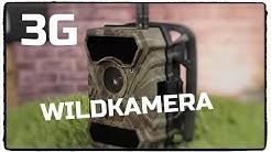 3G Wildkamera ( Sim Karte inkl.) von ICU