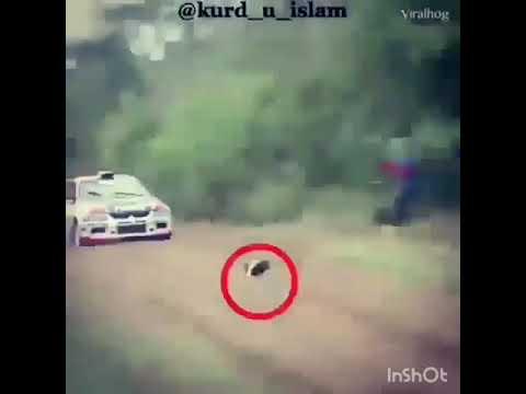 Аллах можизалари чудо
