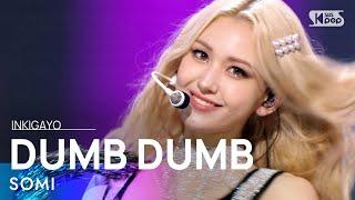 Download SOMI(전소미) - DUMB DUMB @인기가요 inkigayo 20210822
