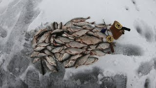 Рыбалка Белоярское водохранилище последний лёд Весной и не пахнет но рыба клёв ОТЛИЧНЫЙ