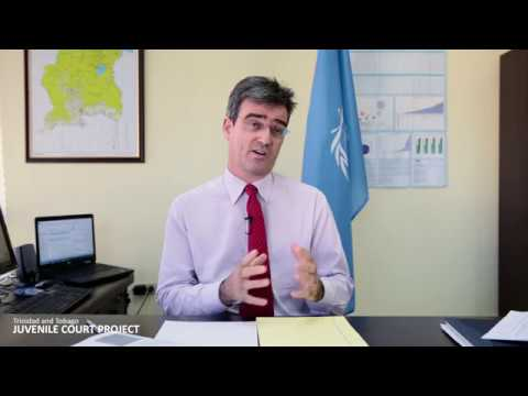 The United Nations Convention on the Rights of the Child and the Rehabilitative Approach