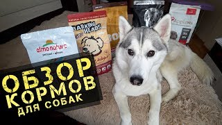 ОБЗОР КОРМОВ ДЛЯ СОБАК: GO, NOW Fresh, Almo Nature, Barking Heads, Applaws