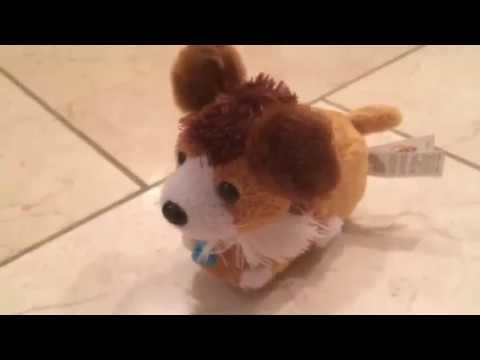 Zhu Zhu Puppies - Booley Review