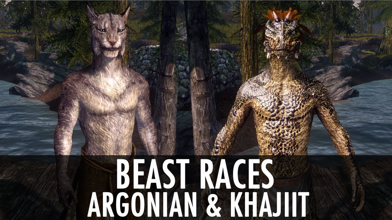 Skyrim Mod Spotlight Beast Races Argonian And Khajiit Youtube