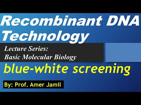 lecture-on-overview-of-recombinant-dna-technology-by-prof-amer-jamil