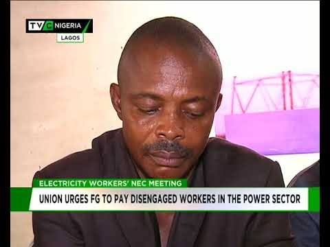 Electricity workers' Union urges FG to pay disengaged workers