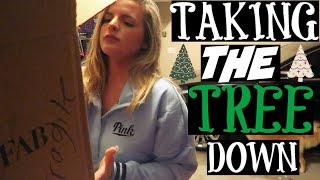 TAKING THE TREE DOWN | Casey Holmes