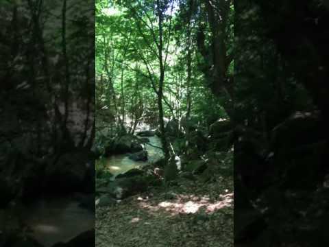 #تركيا الطبيعة والجمال بالقرب من قرية تيرمال # Turkey nature and beauty near the village of Tirmal
