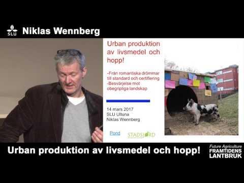 Framtidens lantbruk/Future agriculture - Niklas Wennberg