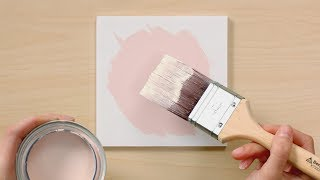 Color Handbook: Light | Benjamin Moore
