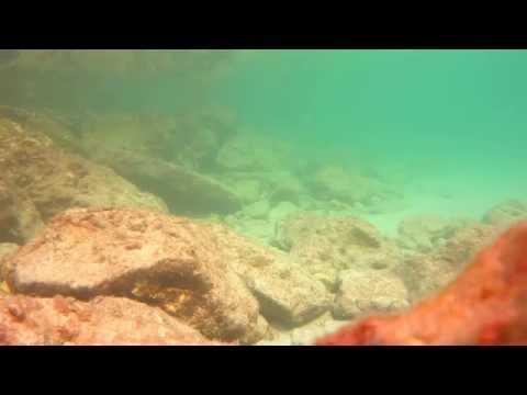 relax 30 min underwater