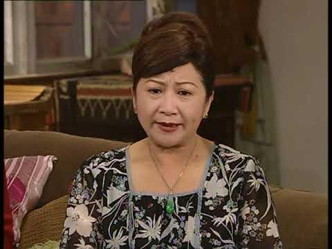 Gia đình vui vẻ Hiện đại 238444 tiếng Việt DV chính: Tiết Gia Yến Lâm Văn Long; TVB