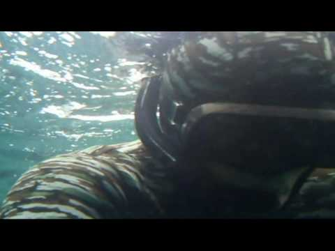 spearfishing offshore cornwall