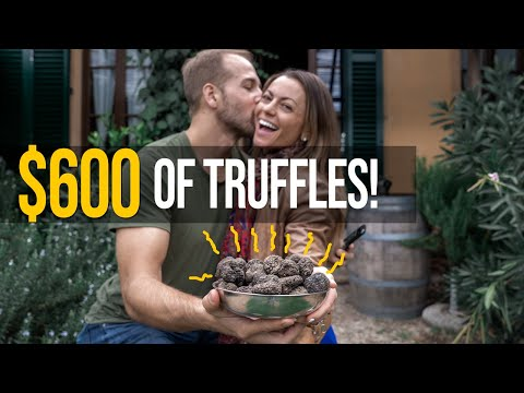 Truffle Hunting! With Dogs In Florence Italy.