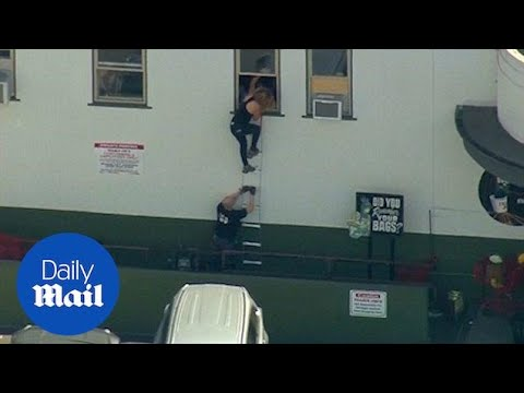 Trader Joe's worker saves lives with ladder in Los Angeles