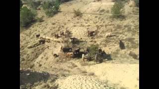 İbrahim tatlıses yaradan var uzun hava Gavran köyü