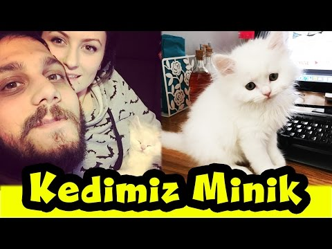 Kedimiz Minik'i Tanıyalım | Kedi Bakımı | VLOG tadında :) Cat Care
