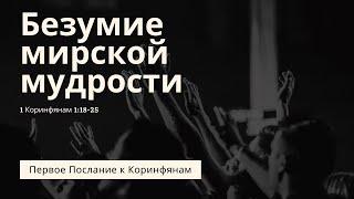 Безумие мирской мудрости Владимир Мицук