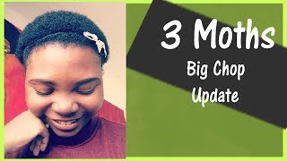 Big Chop Update : 3 Months | New Products