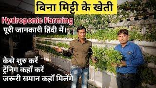 Hydroponics Farming | बिना मिट्टी के खेती कैसे करें। हाइड्रोपोनिक्स खेती कैसे करे