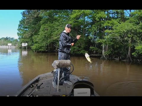 Louisiana River Bass Fishing May 2019