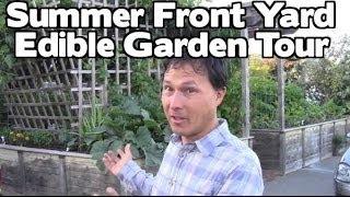 Front Yard Summer Edible Fruit & Vegetable Organic Garden Tour