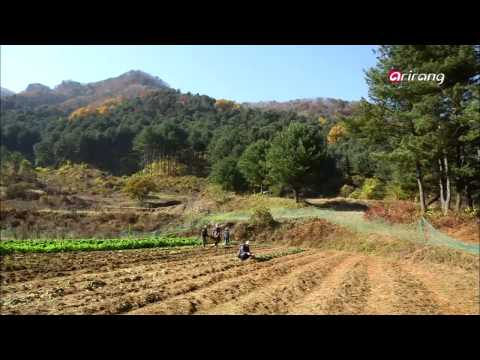 Travel Story - Ep15C05 Gapyeong-gun, Gyeonggi-do